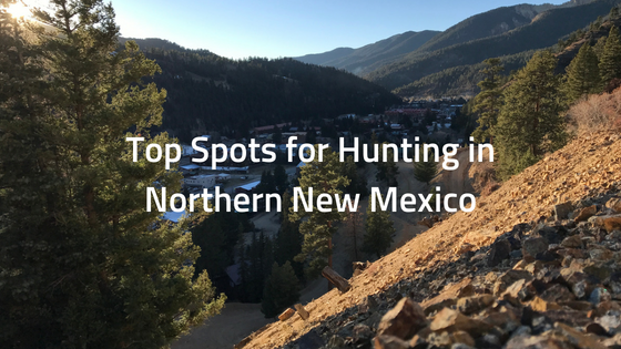 Hunting in Northern New Mexico