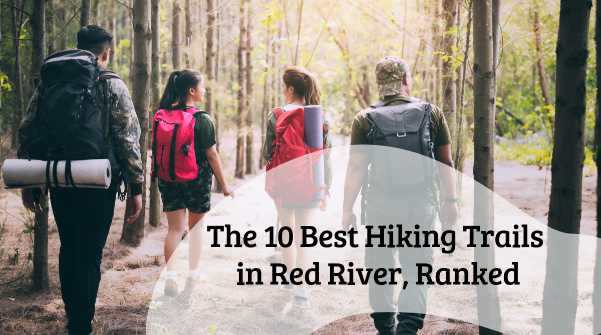 The 10 Best Hiking Trails in Red River, Ranked