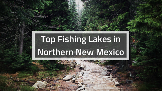 Top Fishing Lakes in Northern New Mexico